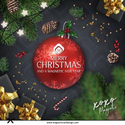 Vánoční Magnetic Day 3.12.2021