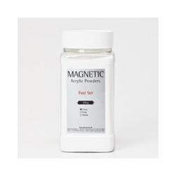 Acrylic Powder Fast Set Clear 350 gr