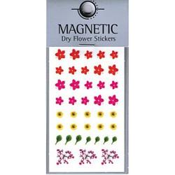 Magnetic Dry Flower Sticker 001