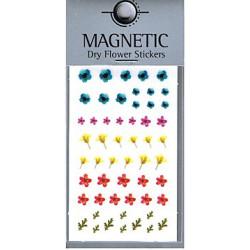 Magnetic Dry Flower Sticker 003