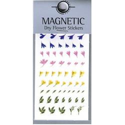 Magnetic Dry Flower Sticker 004