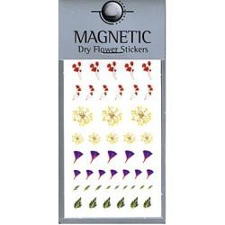 Magnetic Dry Flower Sticker 005