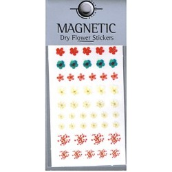 Magnetic Dry Flower Sticker 006