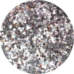 Třpytný prach Platinum Silver 14 g