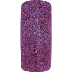 Plum Glitter - akrylový pudr Pro Formula 12g